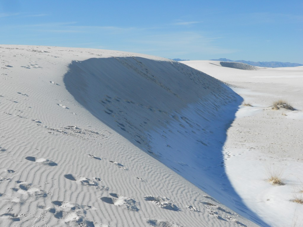 White Sands (25)
