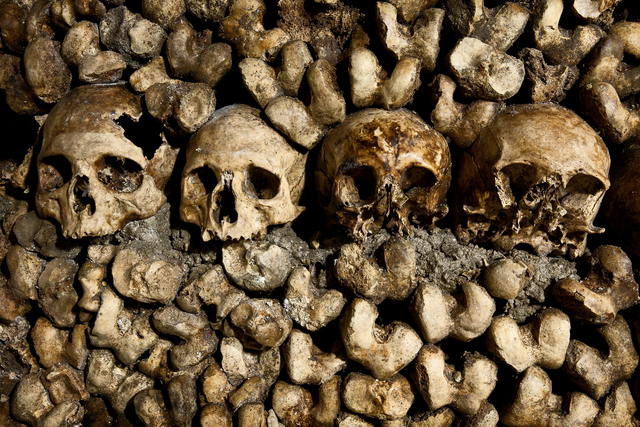 Human skulls and bones in the Catacombs in Paris