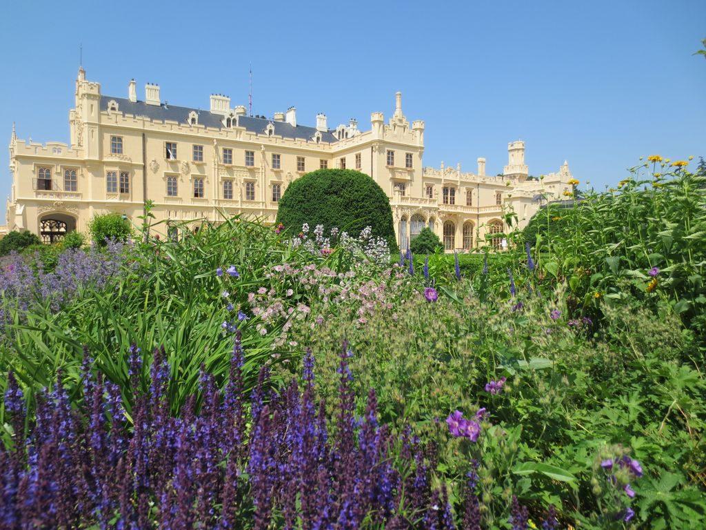 Zamek Lednice a kytky